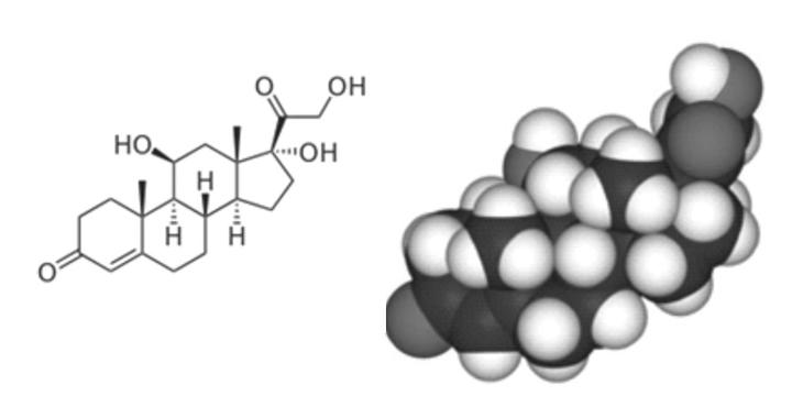 Kem làm trắng chứa Corticoid và biến chứng khôn lường